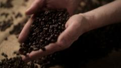 0298 Adult man hands holding coffee grains Stock Footage