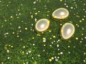 Stock Illustration of golden eggs lying in green meadow