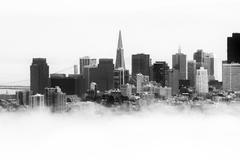 Stock Photo of skyscrapers in a city, transamerica pyramid, san francisco, california, usa