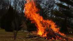 Brush Burning #2 - stock footage
