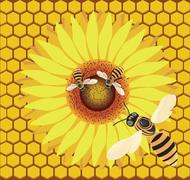 bee on a flower. - stock illustration