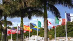Flags of many nations flying on flagpoles in a tropical setting with palm trees Stock Footage