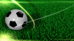 Sports background, soccer, ball, field, grass. Stock Footage
