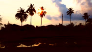 Stock Video Footage of Colorful tropical sunset over coconut tree