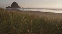 Cannon Beach Oregon - stock footage