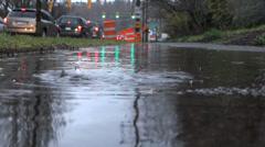 Rain - 21 - Highway Traffic, Sidewalk, Puddle, Trees Stock Footage