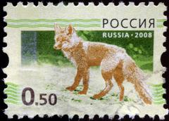 Stock Photo of russian-circa 2008: a stamp printed in the russian federation, shows the fox
