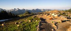paradise mount rainier adams mountain tatoosh range washington state - stock photo