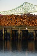 log pile columbia river pier wood export timber industry - stock photo
