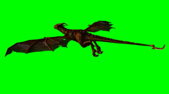 Dragon wyvern in the glide - green screen Stock Footage