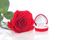 wedding ring and rose, will you marry me? - stock photo