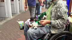 Man in wheelchair with dogs on his lap Arkistovideo