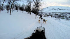POV Sled dogs pulling sledge handler over extreme winter terrain Norway Stock Footage