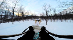 POV Sled dogs pulling sledge handler over extreme winter terrain Norway - stock footage