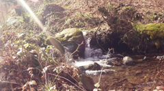 Mountain stream, the beginning of the mountain river Stock Footage