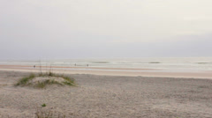 St augustine Beach and dunes - stock footage