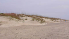 St augustine Beach Panoramic Stock Footage