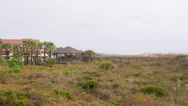 Stock Video Footage of St Augustine Beach dunes