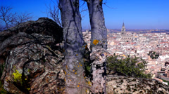 Trees, cliffs and panoramic  view of Toledo city, Spain Stock Footage