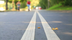 Two Lines of Road Marking. Low Angle. Stock Footage