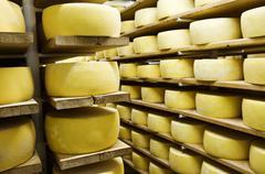 Cheese in shelf - stock photo