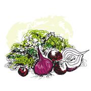 Vegetable still life - stock illustration