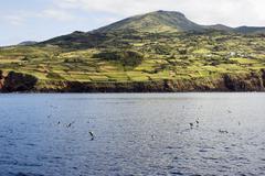 Rural landscape, Pico island, Azores Stock Photos