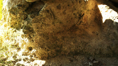 Eski-Kermen cave city. Eski-Kermen plateau. Crimea. Stock Footage