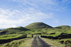 Pasture fields in Pico island, Azores Stock Photos