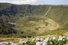 Inside of Caldeira volcano in Faial, Azores Stock Photos