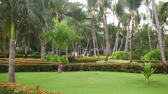 Resort in Punta Cana Stock Footage