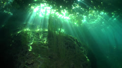 Under the lake floor bed with bright sunbeams light Stock Footage