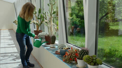 Cactus plants grow in conservatory and woman water watering-can Stock Footage