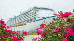 Large Cruise Ship Docked Amongs Pink Flowers Stock Footage