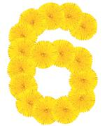 Number 6 made from dandelion flower Stock Photos
