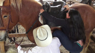 Stock Video Footage of Mounting a Horse, Horseback Riding, Horses, Animals