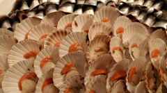 Fresh scallops and fish fillets on market stall closeup. Stock Footage