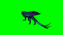 Dragon runs - green screen Stock Footage