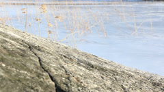 Rocky shoreline and reeds in springtime Stock Footage