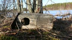 Birdhouse of goldeneye fallen on ground Stock Footage