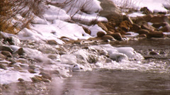 Yampa River Steamboat Springs Stock Footage