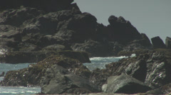 Rocky Shoreline Stock Footage
