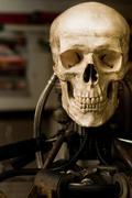 Human skull on robot body close up - stock photo