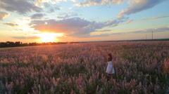 Young Woman In Field of Lavender - stock footage