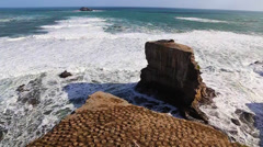 Two high rock ocean rock formatations home to the gannet bird colonies angle 2 Stock Footage