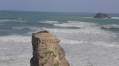Wide still shot of murawai ocean rock formation and gannet with ocean sound Stock Footage