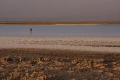 laguna ceja, salt lake - stock photo