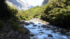 Hollyford river in Fiordland, New Zealand Stock Footage