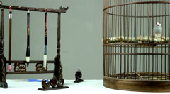 The stationary and toy of the Chinese people in old times,include Java Finch Stock Footage