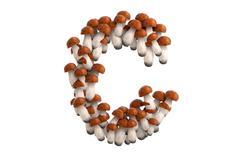 Boletus mushroom letter C on white background - stock illustration